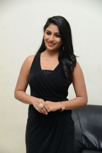 Kruthika-Jayakumar-at-Vinavayya-Ramayya-Audio-Launch