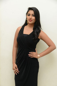 Kruthika Jayakumar at Vinavayya Ramayya Audio Launch