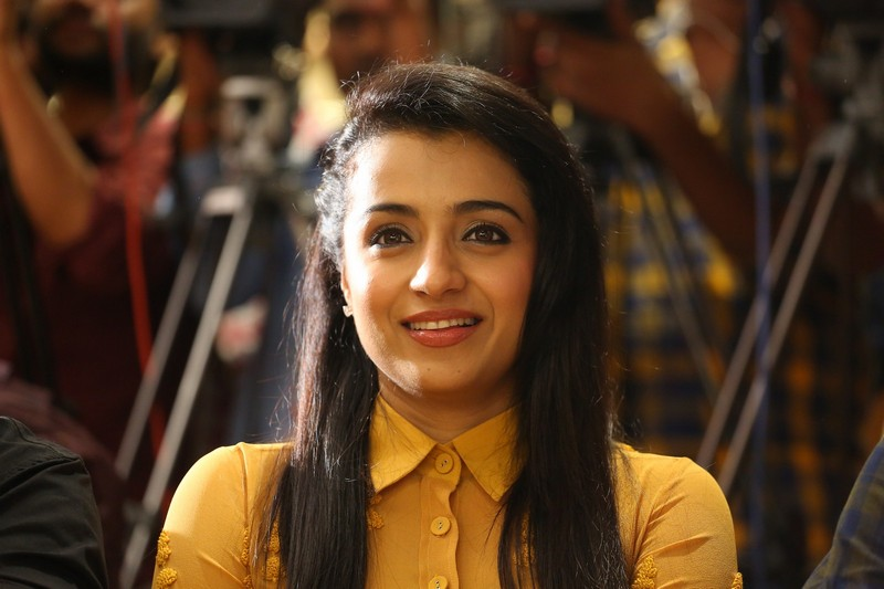 Trisha Latest Glam Pics from Cheekati Rajyam