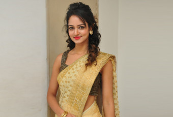 Shanvi saree picks
