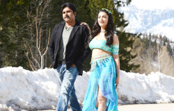 Katamarayudu Movie New Stills|jilgul.com